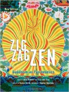 חוקר את הצומת בין פסיכדליה לבודהיזם ומדיטציה. הספר זיג זג זן